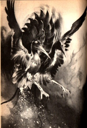 gamera vs phoenix 5