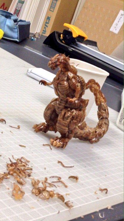 cicada godzilla