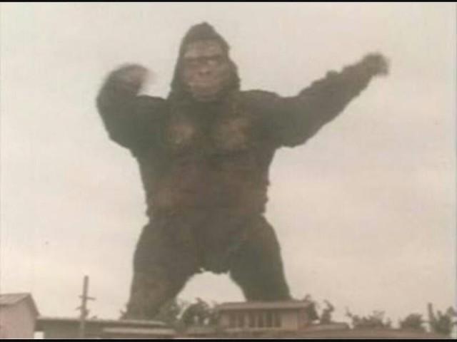 gorilla-greenman-2