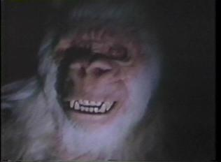ivory-ape-2