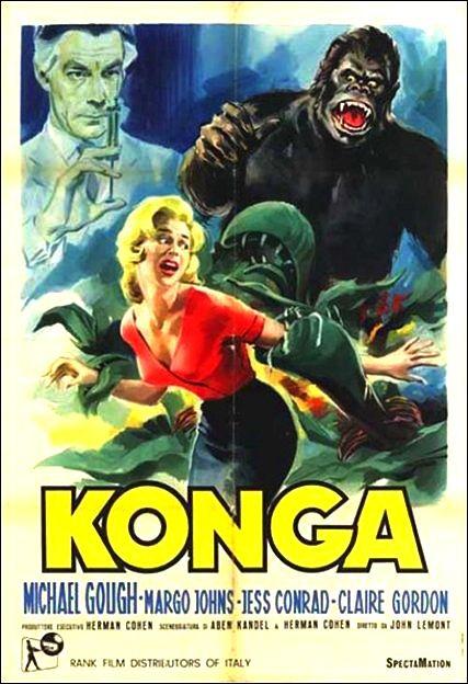 konga-2