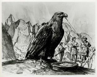 war-eagles-storyboard